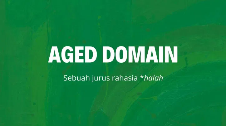 aged domain